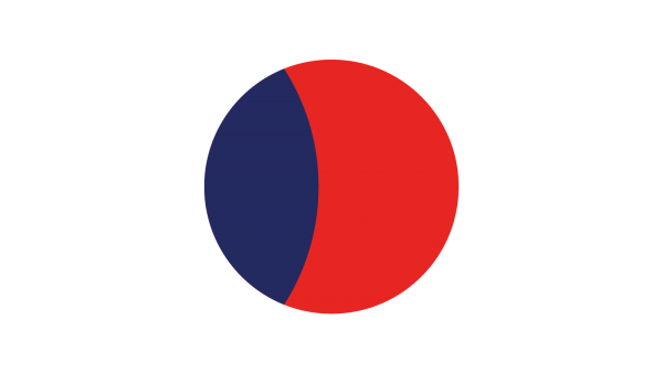 Onit | Icône - Cercle bleu et rouge - Diagnostic d'entreprise